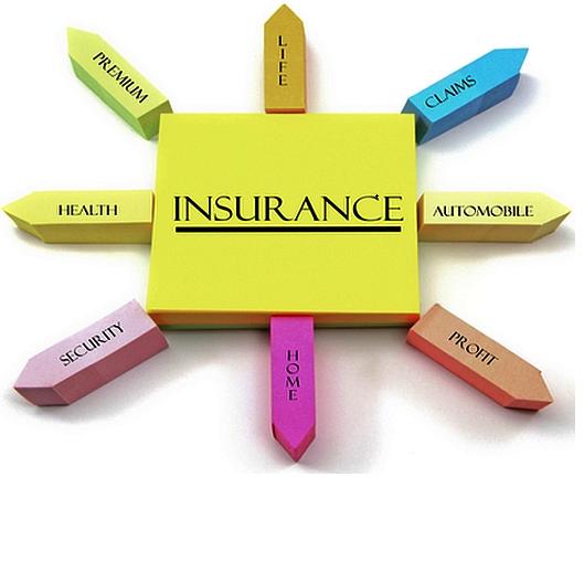 Insurance Domain Knowledge Personal Finance Finance Reverse