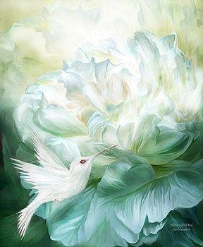 Carol Cavalaris - Hummingbird Kiss