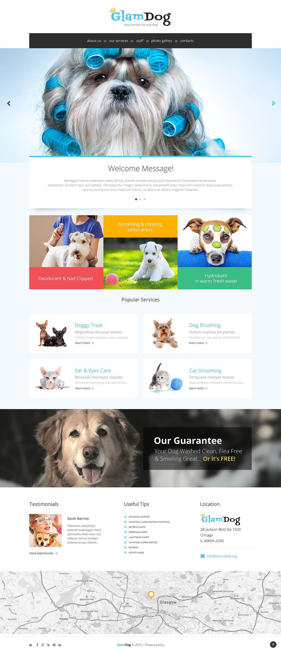 dog grooming website template design layouts template and website