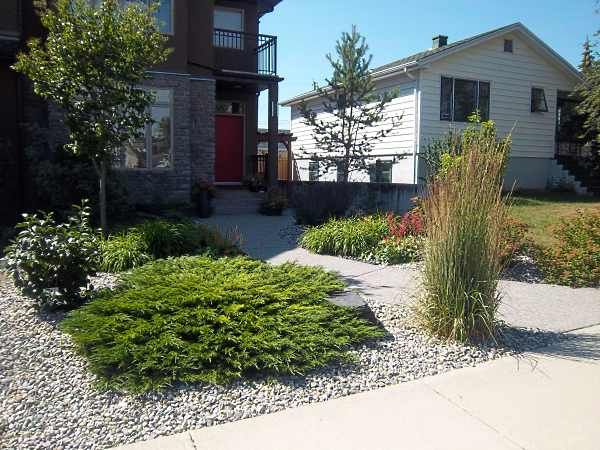 Many people looking for infill landscaping ideas for small for No maintenance front yard