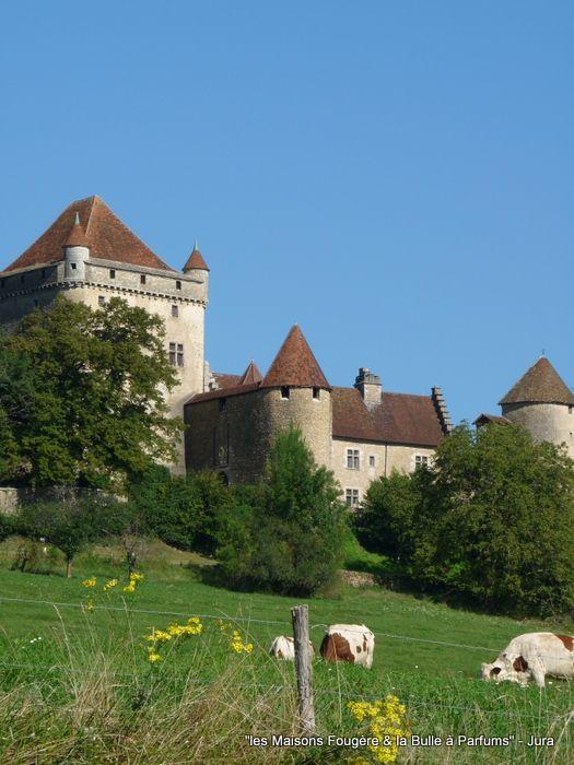 Chateau Du Pin Entre Lons Le Saunier Et Chateau Chalon Www Lesmaisonsfougere Com Bezienswaardigheden