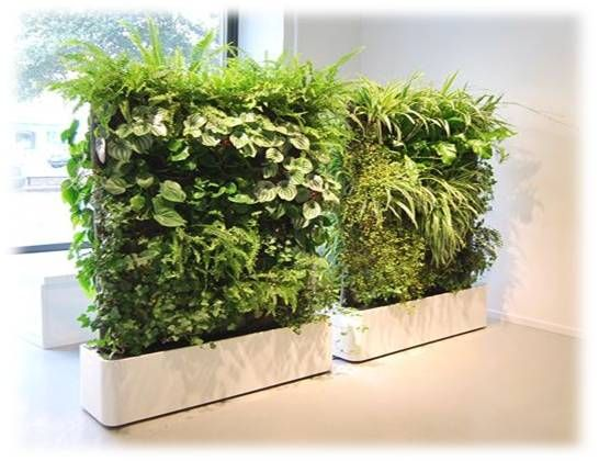 Jardineras de fibra de vidrio con pared verde de plantas artificiales plantas artificiales - Jardineras de fibra de vidrio ...