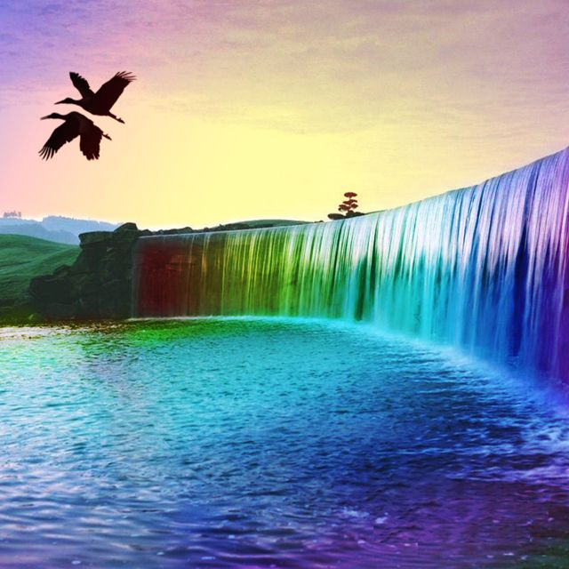 Calming Colors Active Water Gliding Birds Rainbow Waterfall Waterfall Wallpaper Colorful Landscape
