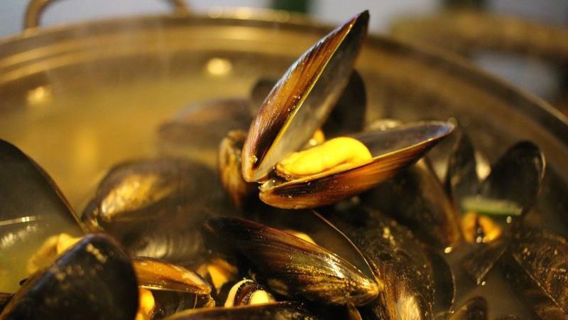 Do you enjoy eating mussels? Cool, same. Something, however, is happening to mussels as we know them, and it's changing them in a pretty horrifying way.