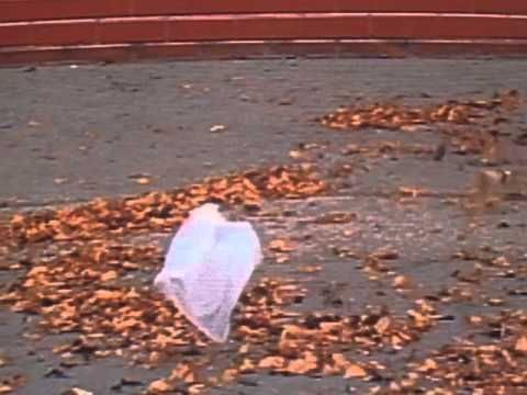 'American Beauty' - Thomas Newman (the 'plastic bag scene')