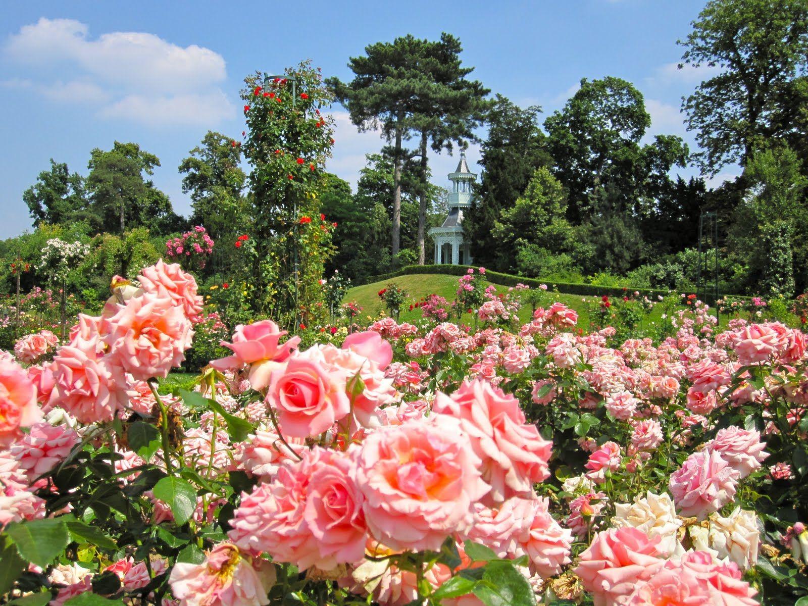 Les Jardins De Bagatelle Paris Summer Pretty Flowers Paris
