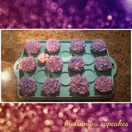 Hydrangea cupcakes that I made for a cupcake bouquet but never got around to making the bouquet.  I put purple frosting in the piping bag around the edges and put pink inside of the purple and used a 2D wilton tip.