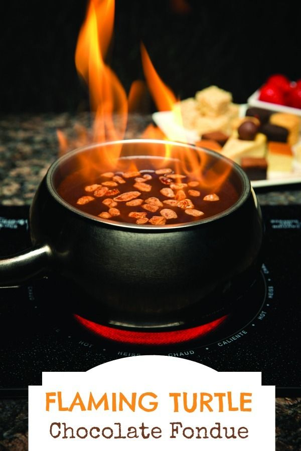 Flaming Turtle Chocolate Fondue - Just Short of Crazy