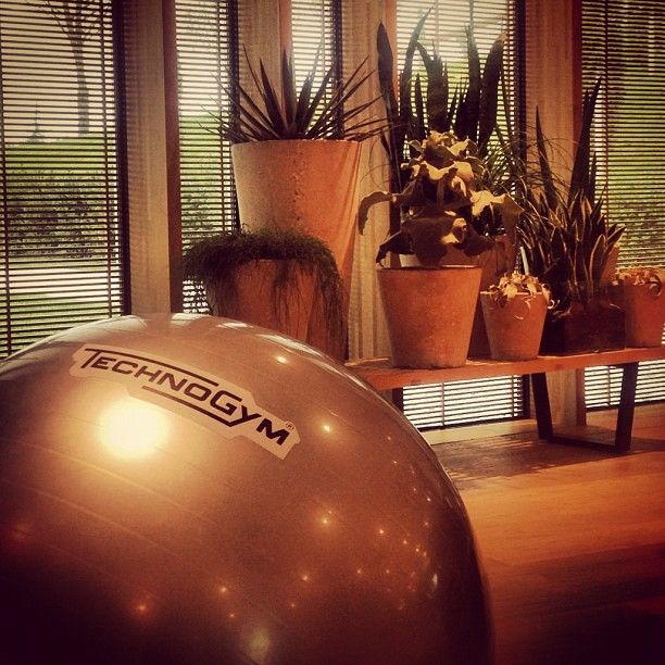 Technogym Wellness Ball Effectively reach goals of improving balance, coordination and posture with the Wellness Ball™.  It is made with special materials that favor perfect stability, traction and cushion during exercises.   The innovative blend in the Wellness Ball™ protects against bursting, thereby ensuring safety and durability.
