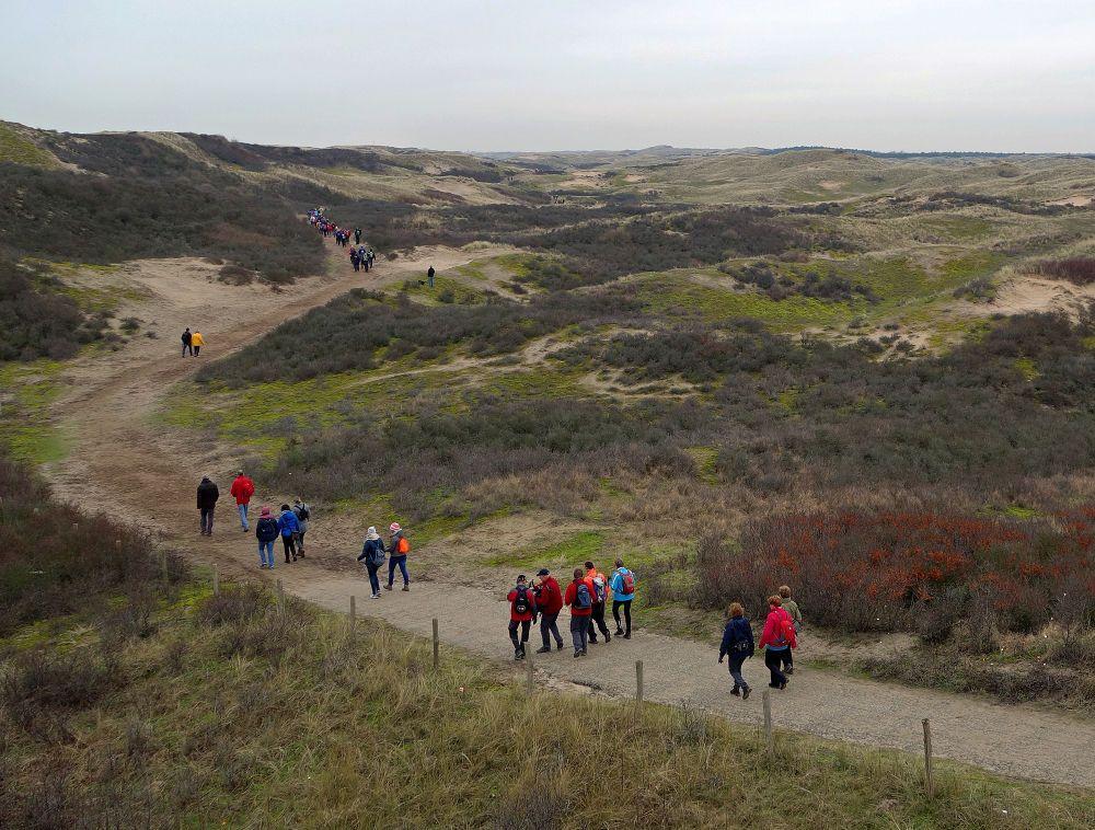 Dunes at Egmond aan Zee by hugodejong35