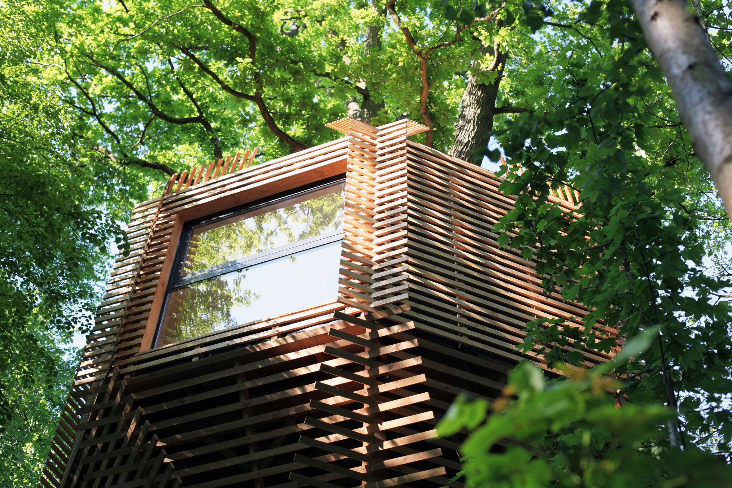 to form the exterior of the 23 square metre treehouse lavit and his