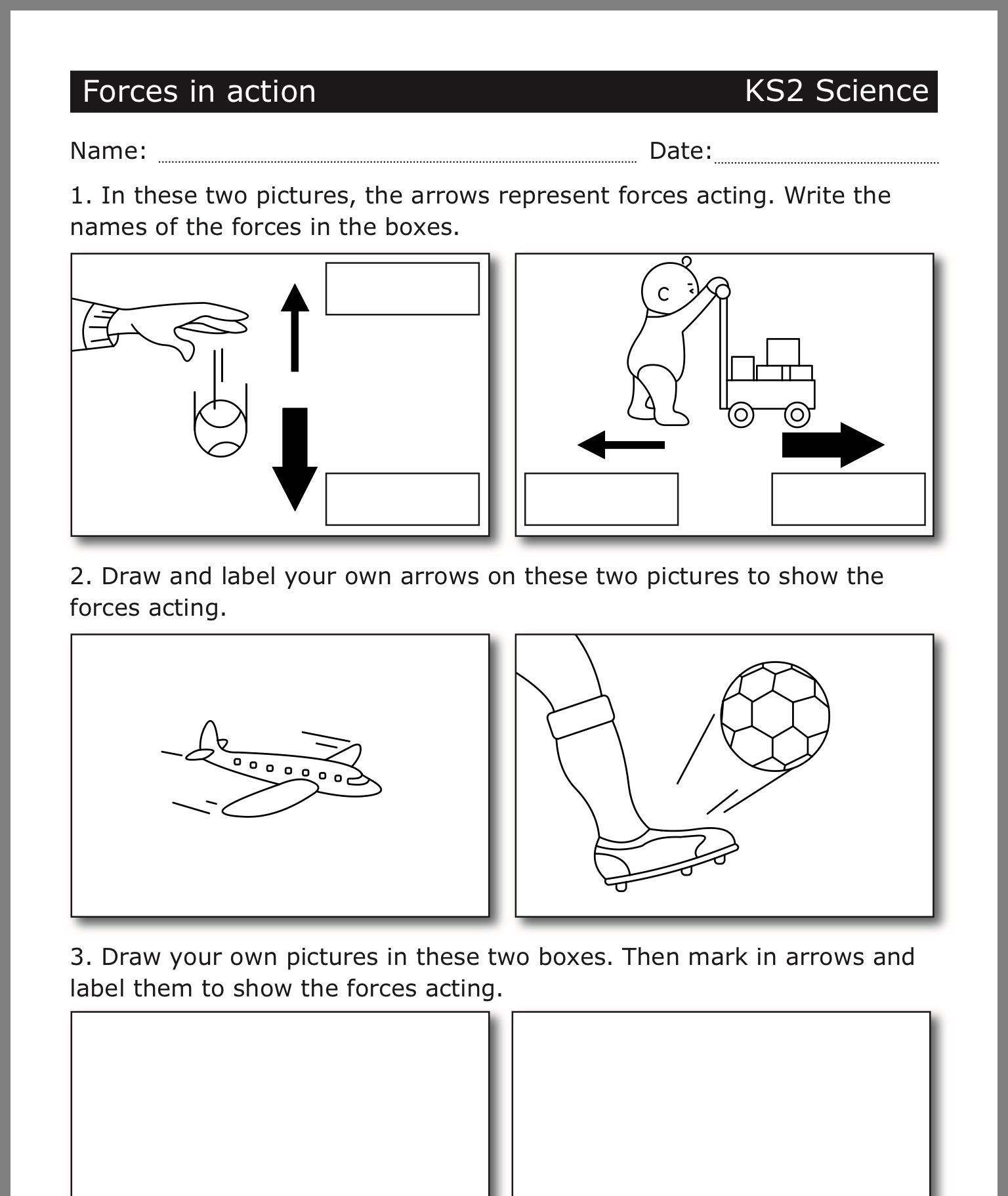 medium resolution of Pin by Fiona Hardie on Force and Motion   Biology worksheet