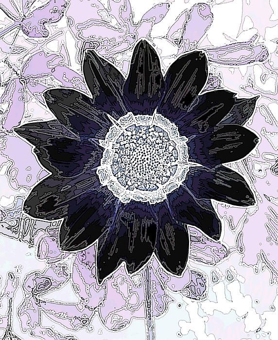 Black and Blue Sunflower Art on Lavender Fine Art Print - Mary Sedivy