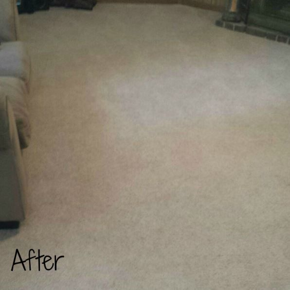 Http Cleanproscarpetcleaning Com Corryton Tn You Know When You