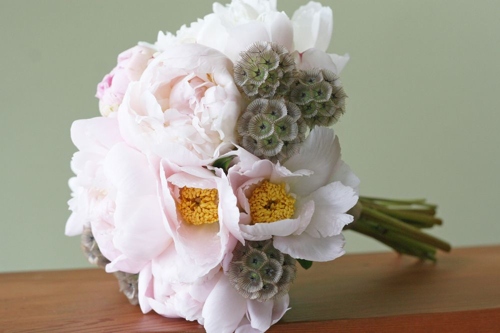 Peonies and scabiosa pods | Yasmine Floral Design