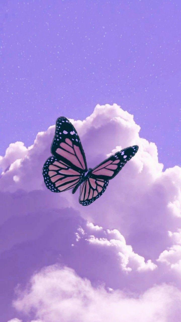 Purple Butterfly Wallpaper Aesthetic : purple, butterfly, wallpaper, aesthetic, Purple, Butterfly, Wallpaper, Iphone,, Wallpaper,, Iphone