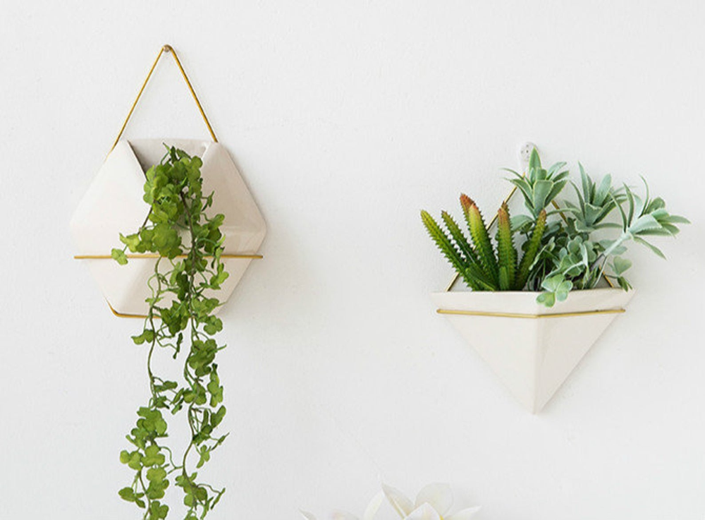 wall hanging succulent planter