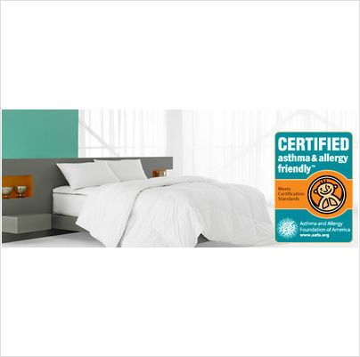 Hollander Standard Queen Asthma Allergy Friendly Bed Pillow NEW