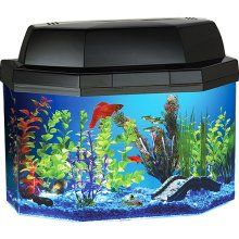 Fish & Aquariums Fluval 360 Nano Aquarium Set 10l Hagen Small Round Cylinder We Take Customers As Our Gods Pet Supplies