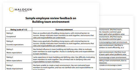 Sample Performance Review Comments  Appraisal Feedback Phrases