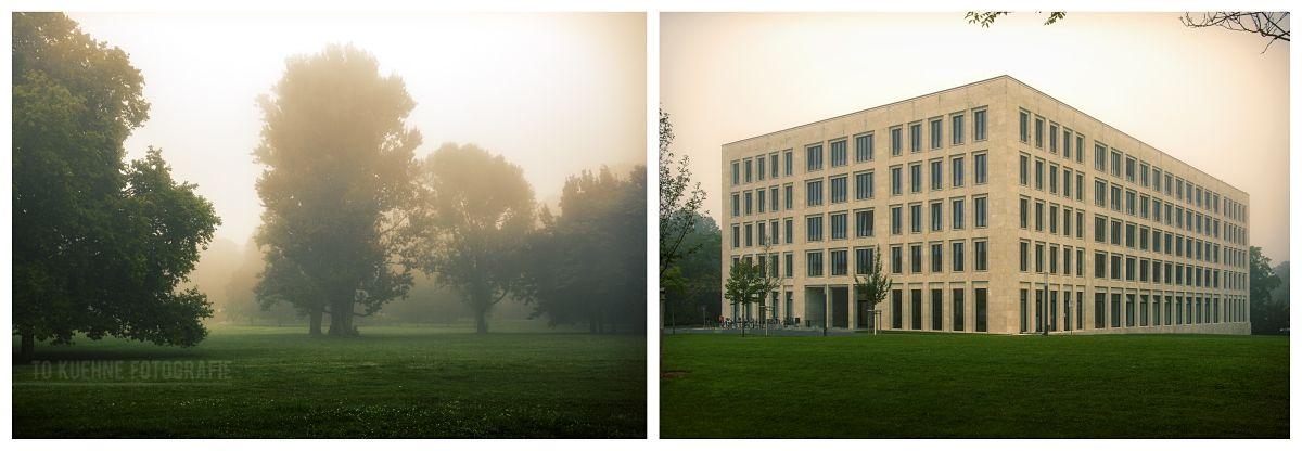 #tokuehne #fog #nebel #frankfurt #green #uni #campus