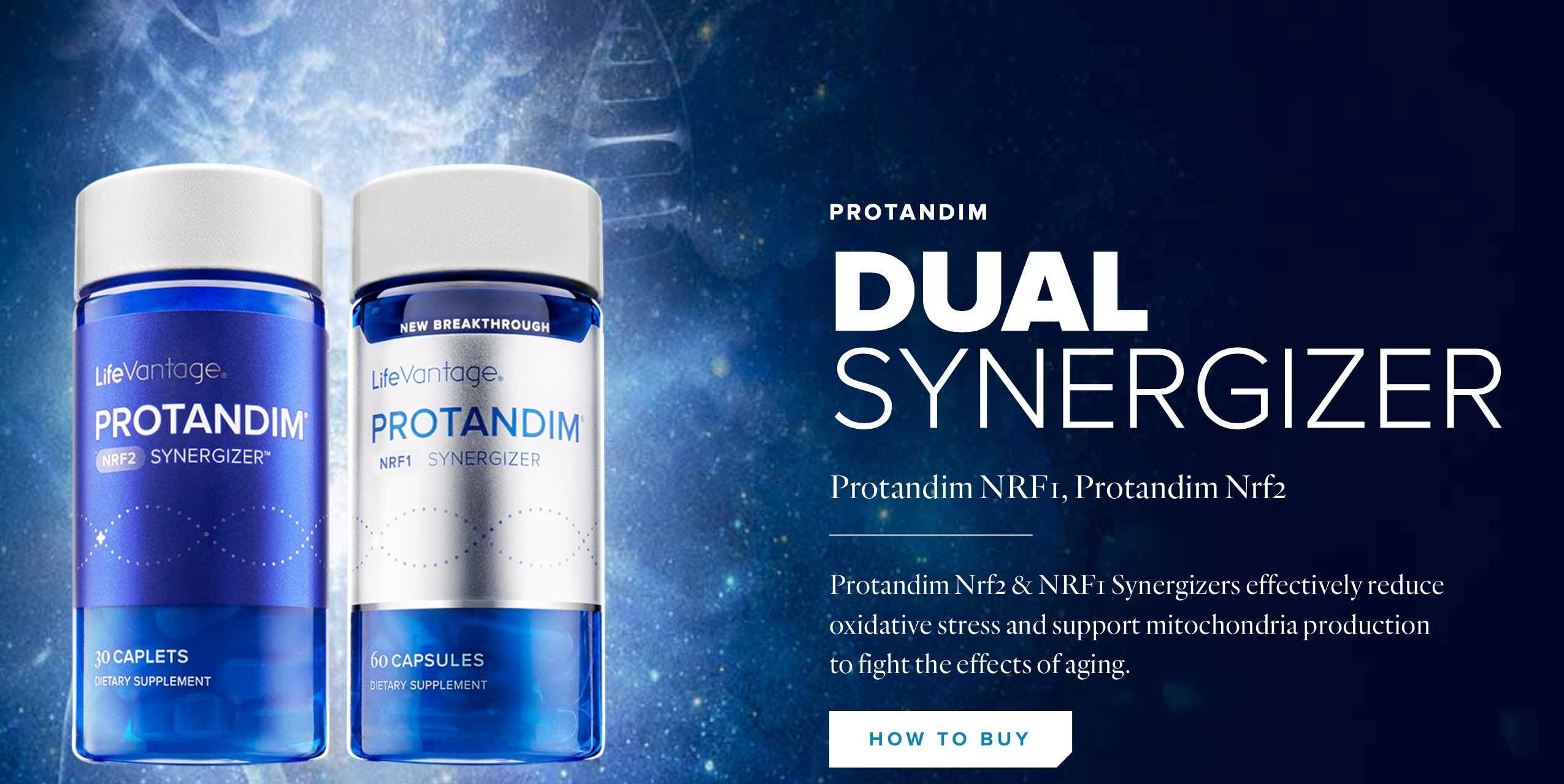 Mitochondrial Dysfunction and oxidative stress. Protandim nrf1 ...