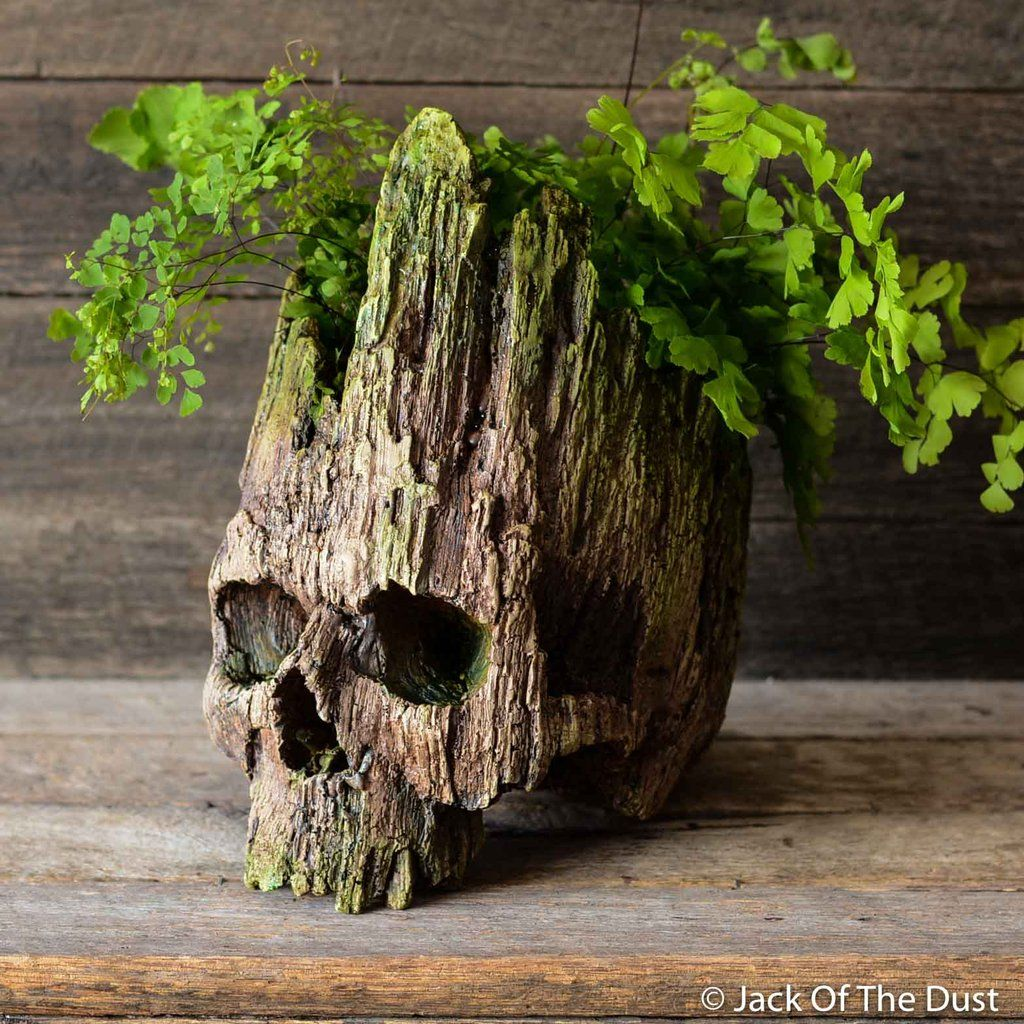 Junk Garden Ideas 2018 Edition: Planters, Real Human Skull, Wooden Art