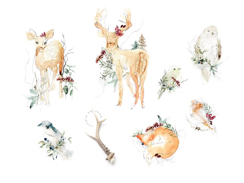 Woodland Fine Art Embellished Winter Animals Clipart