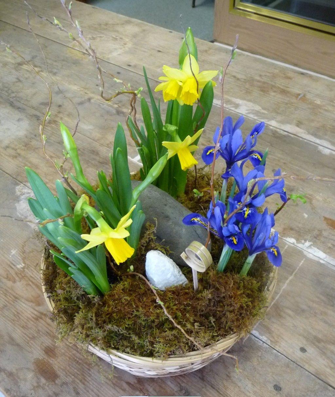 flower-garden-outstanding-portmeirion-butter-dish-botanic-garden-dish-garden-plants-wholesale-types-of-dish-garden-plants-how-to-make-dish-garden-plants-taking-care-of-dish-garden-plants-dish-ga-1024x1212.jpg (1024×1212)