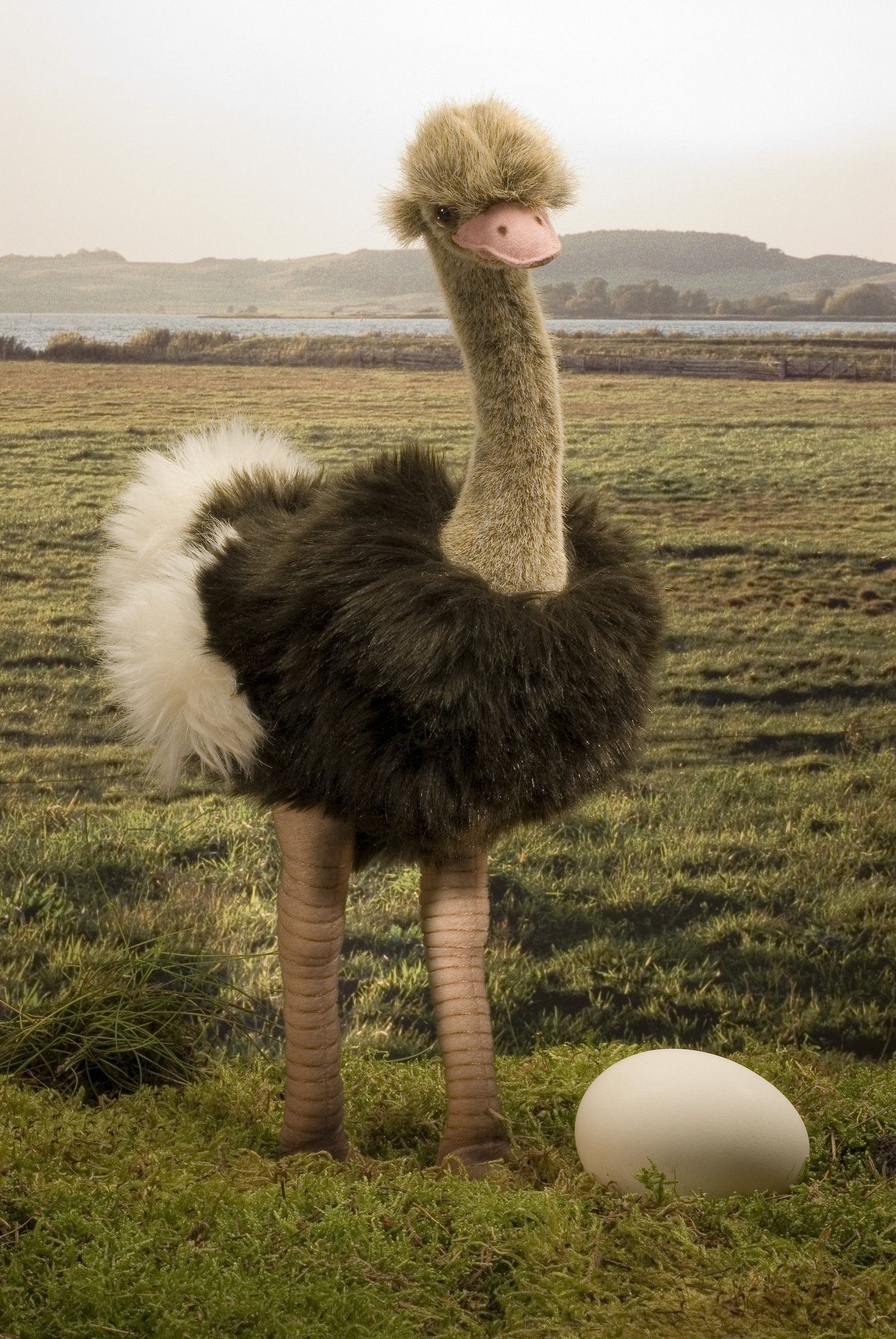 страус с пылесосом картинка что помещается