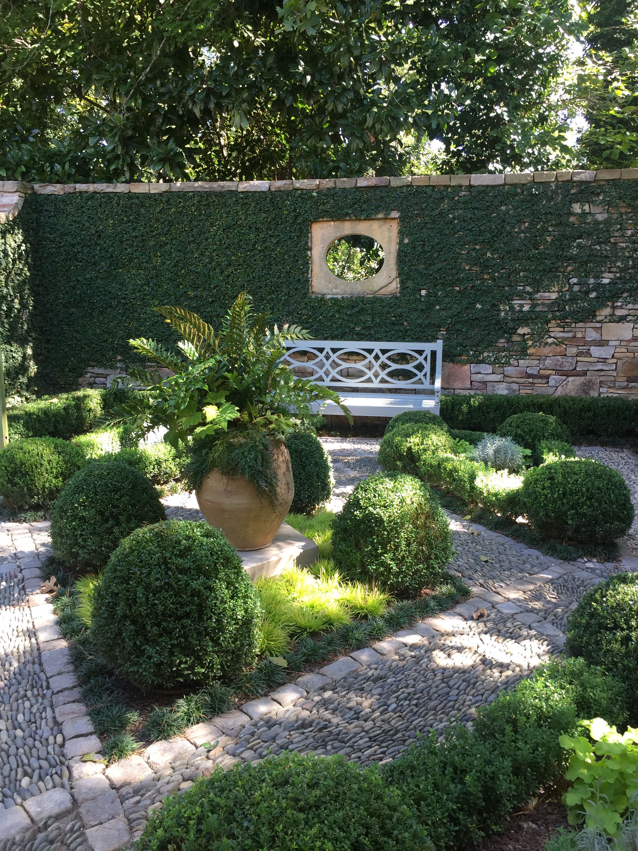 Walled Courtyard Garden With Boxwood And Fig Vine By