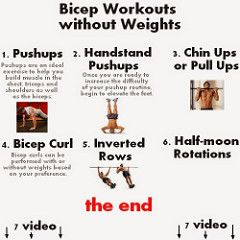 back biceps workout routine  bicep workouts without