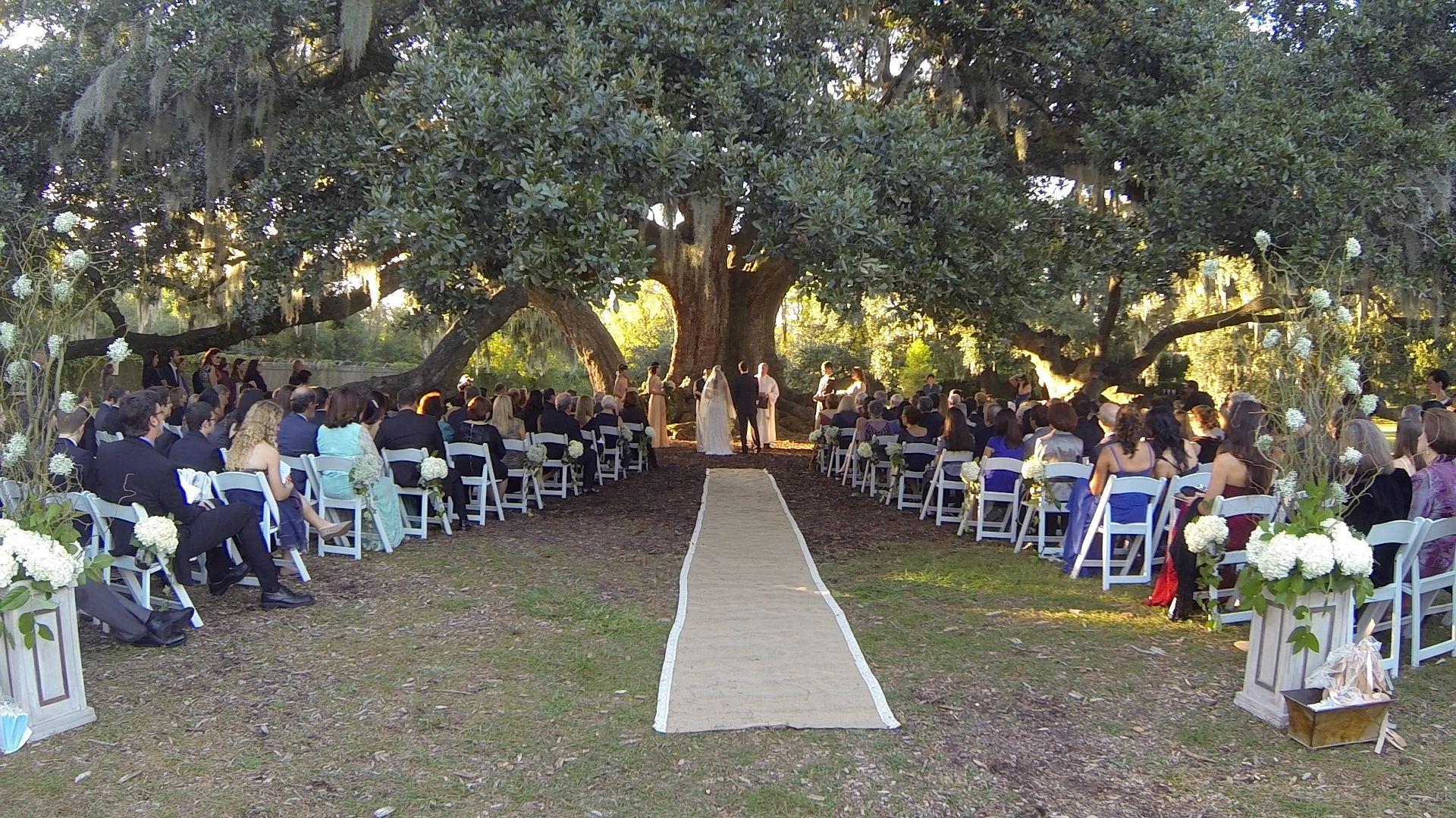 Outdoor Wedding @ The Tree Of Life, Audubon Park, New