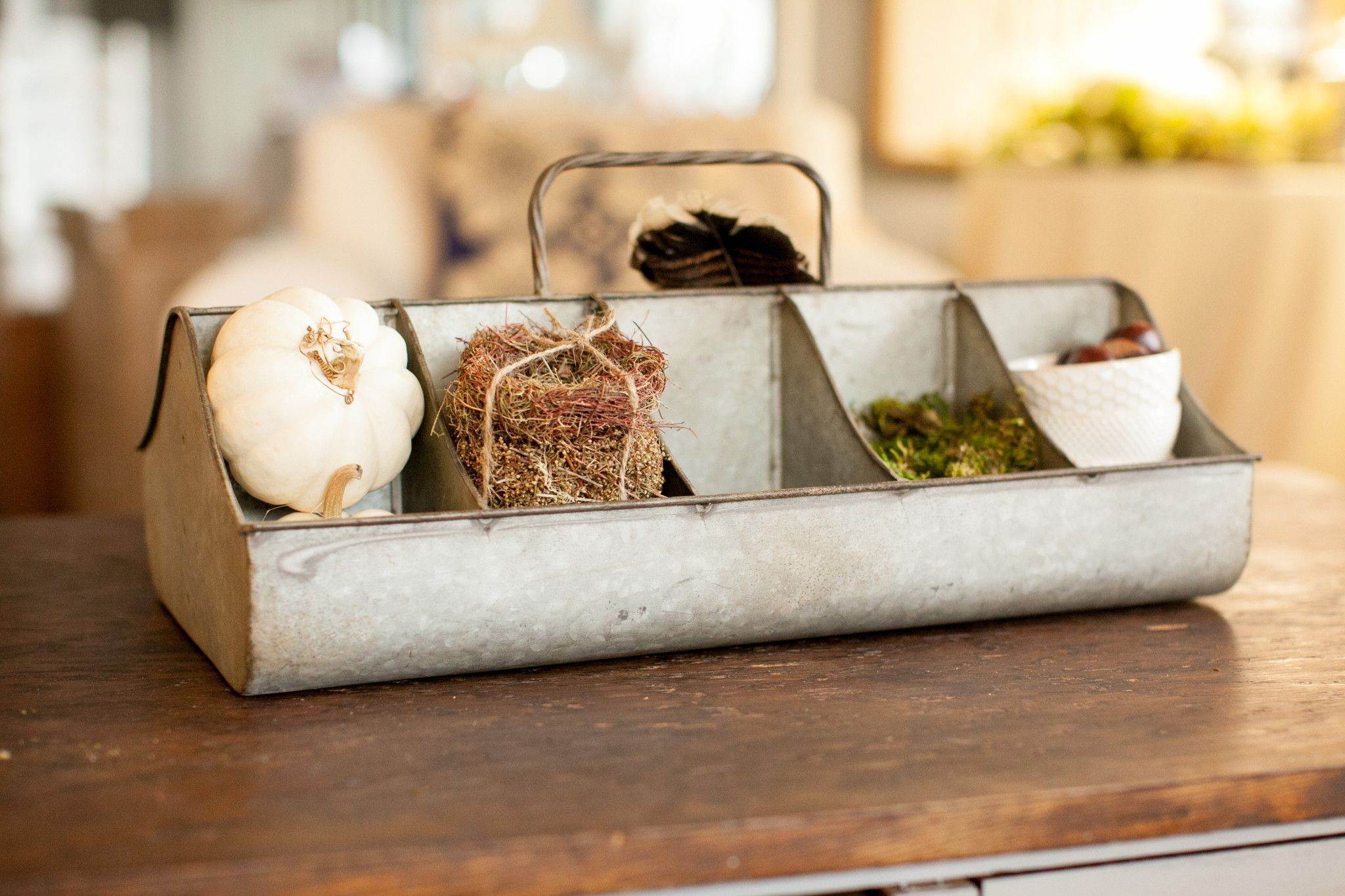 Feed Tray with 10 Compartments – The Arrow's Nest