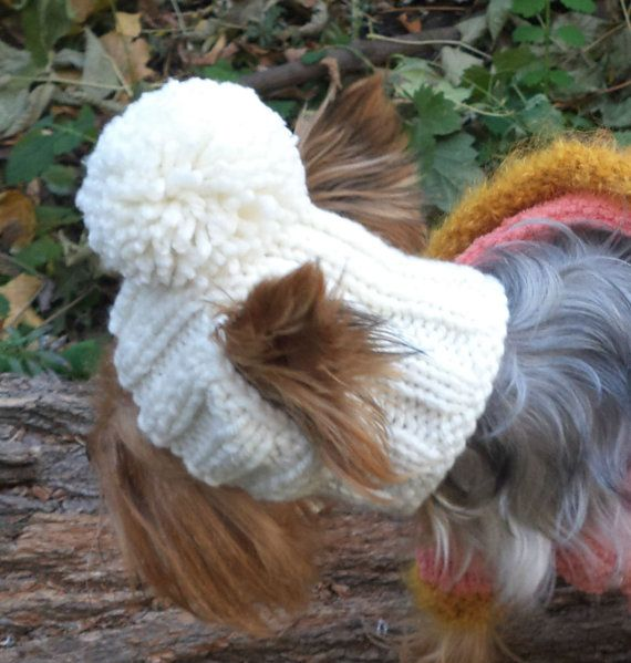 Hat Dog PATTERN pet dog pattern Dog Hat Clothes Pet Hats | crochet ...