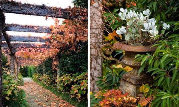 Romantic Garden Ideas - Bing Images