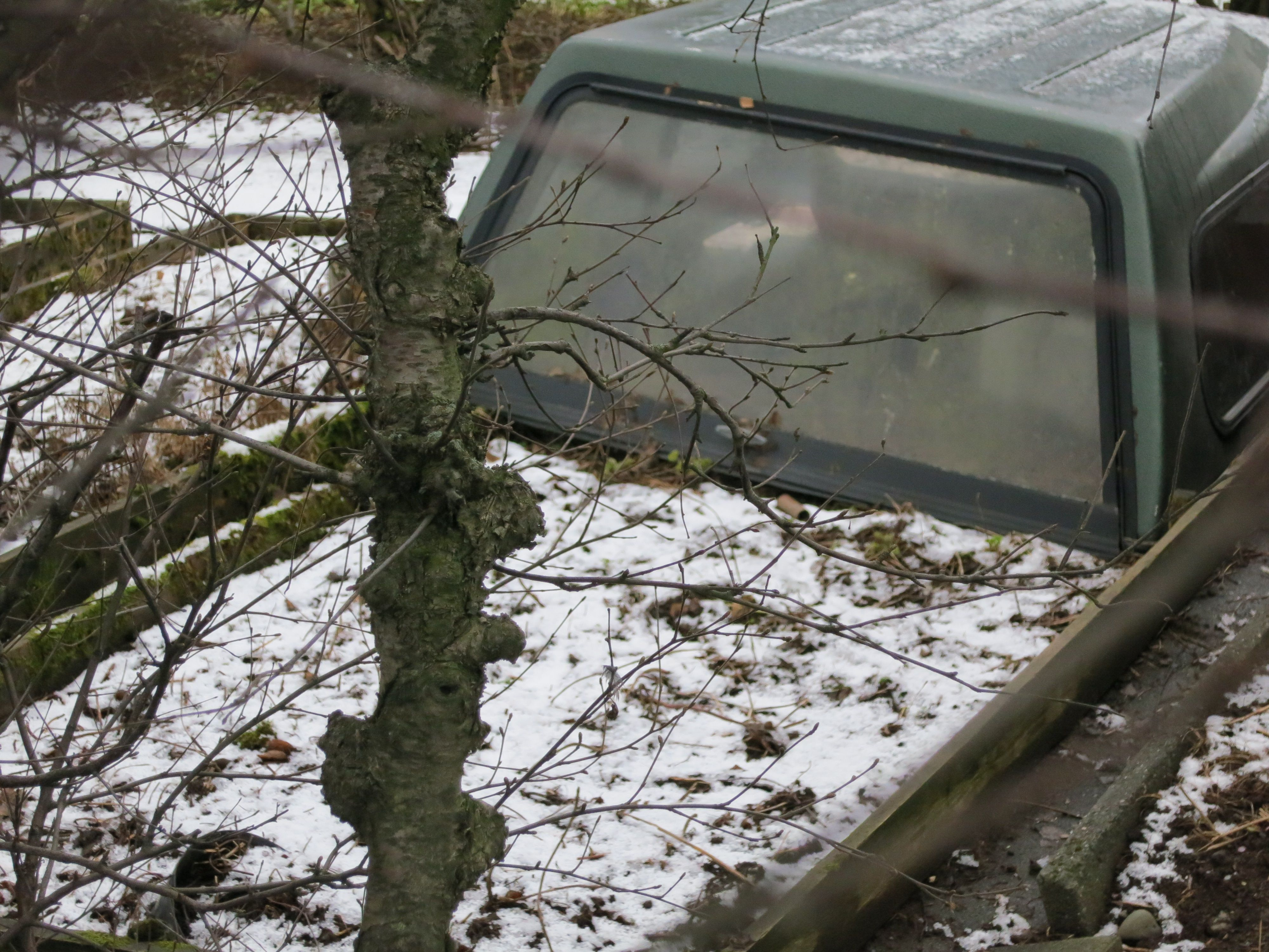 camper shell used as greenhouse on winter garden bed gardening