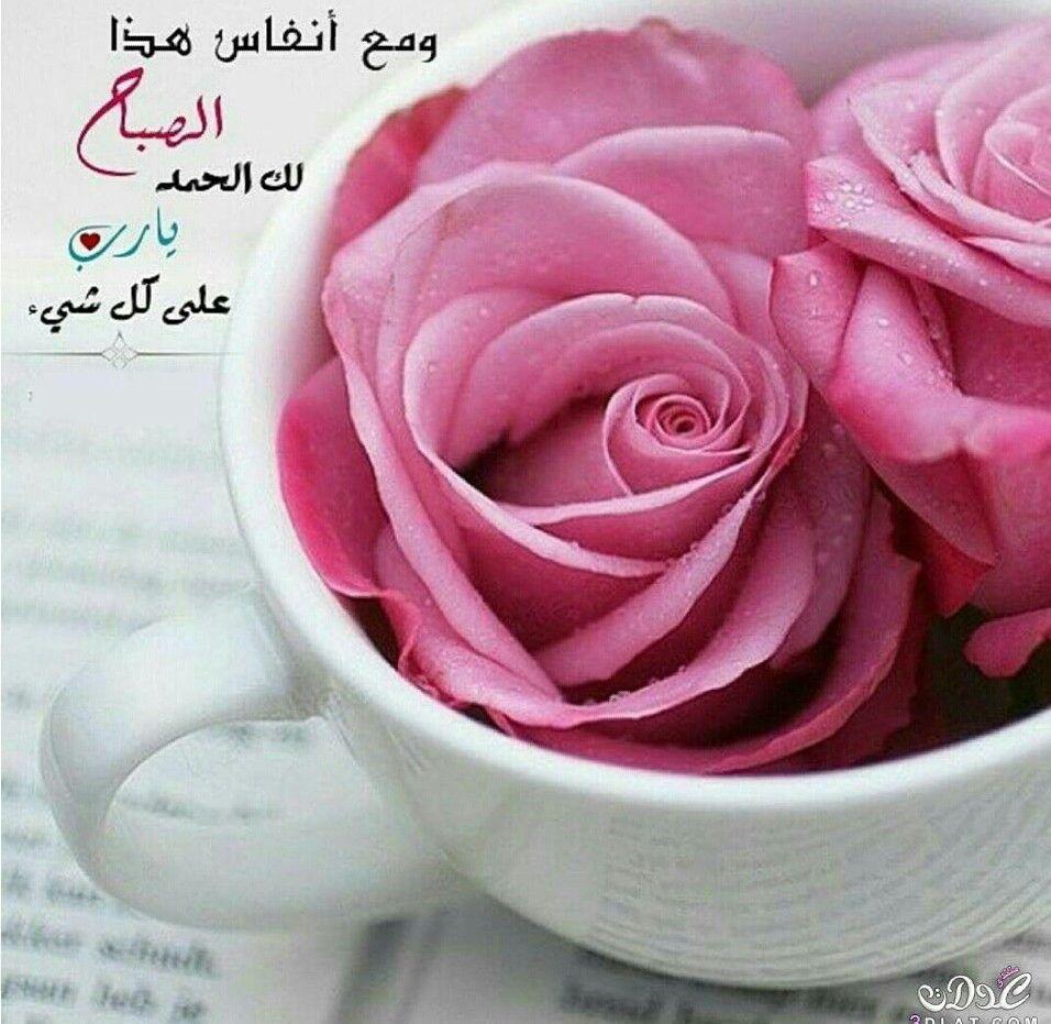 اشراقة الصباح Good Morning Good Night Heart And Key Rose