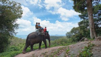 Jungle Trekking & Elephant Ride Half-Day Tour at Siam Safari in PHANG NGA BAY in Thailand