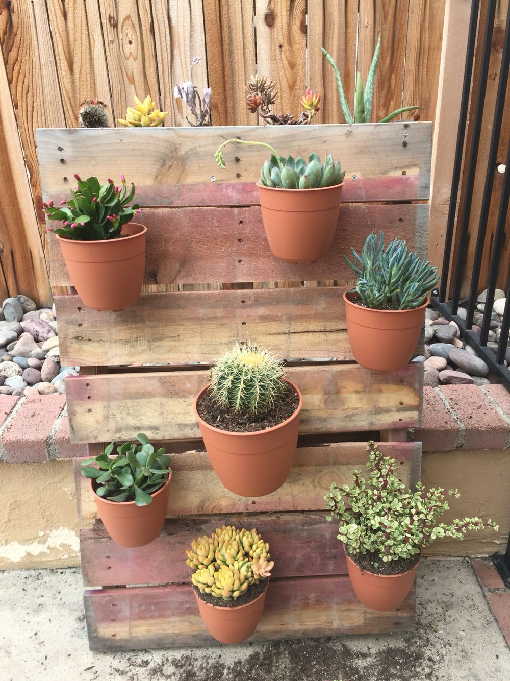My succulent garden. Home Depot sells the pallets for $15. Instead ...