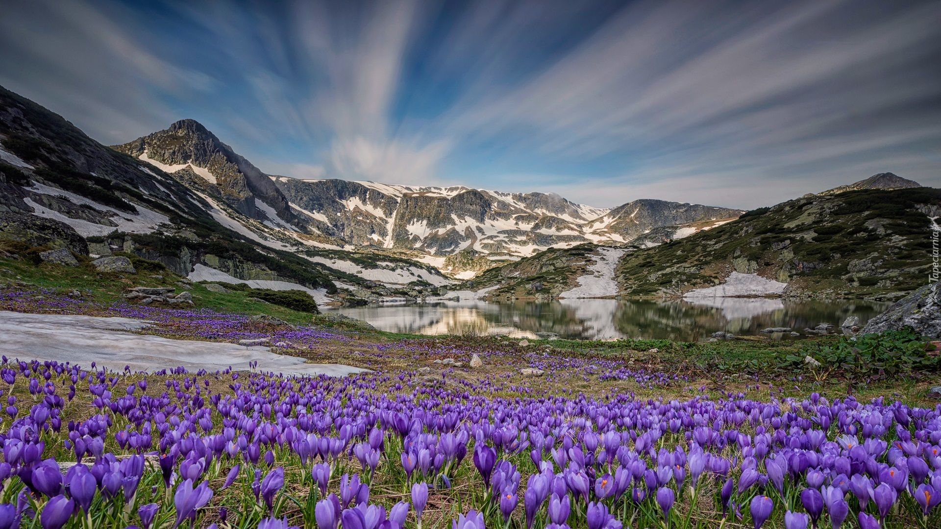 Wiosna Gory Jezioro Fioletowe Krokusy Nature Photography Nature Natural Landmarks
