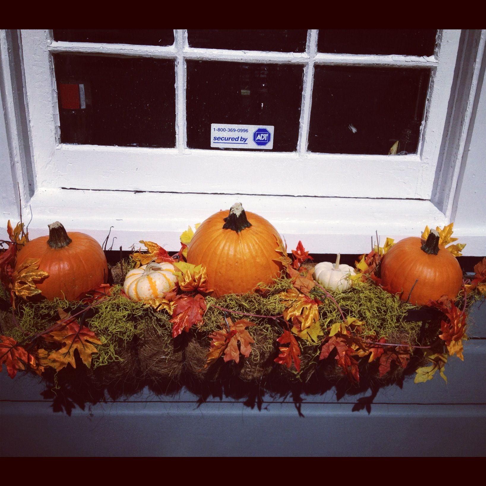 Redo front box with Pumpkins, garland  leaves for fall/Halloween - halloween window decor
