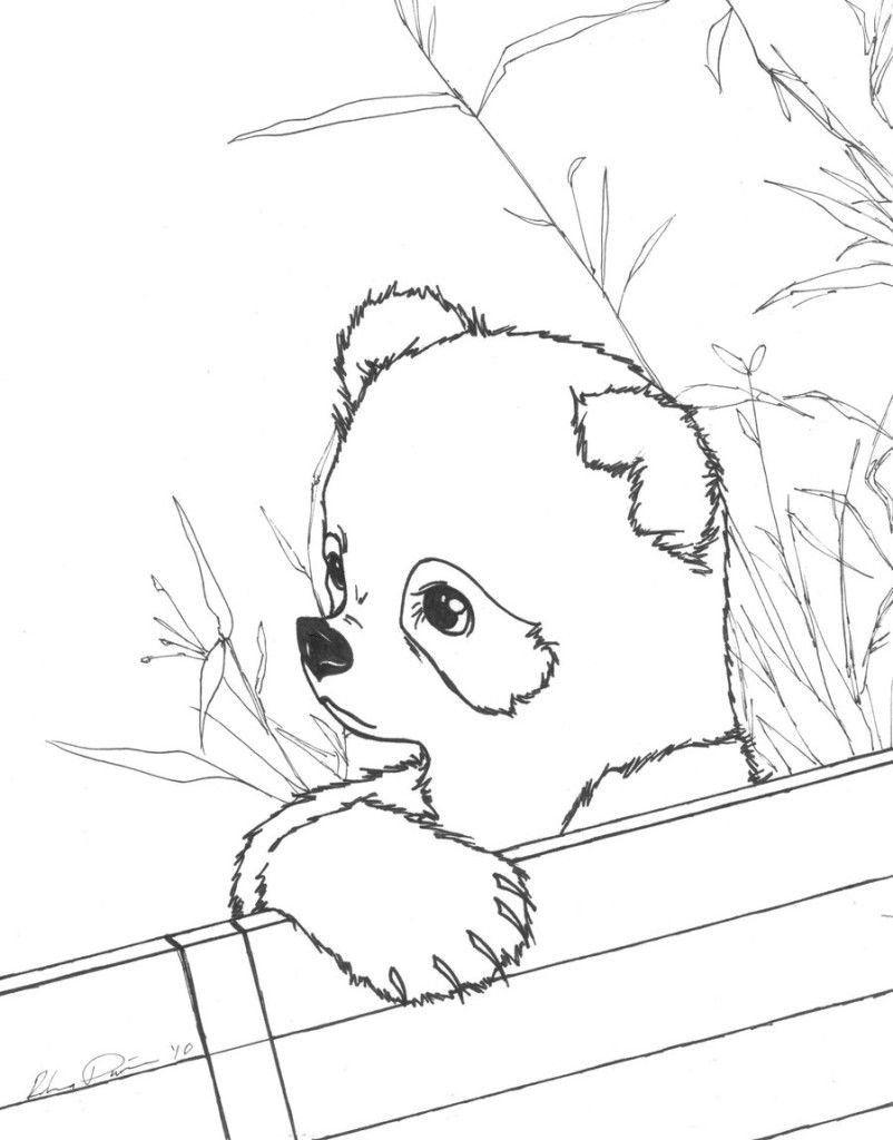 Cute Baby Panda Coloring Pages Panda Cute Free Coloring Pages Panda Coloring Pages Animal Coloring Pages Free Coloring Pages