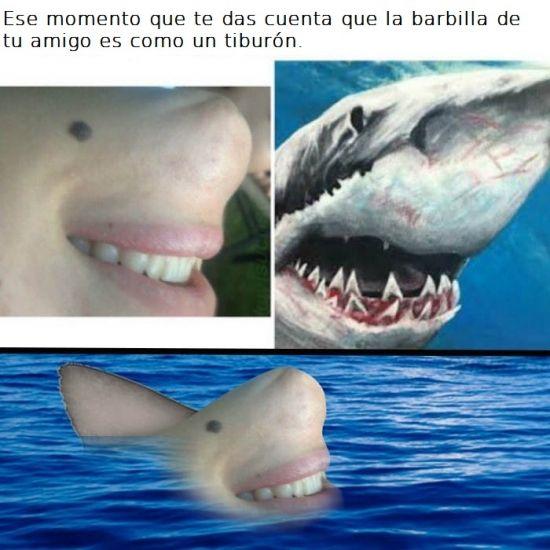 La Barbilla De Tu Amigo Es Un Tiburon Gracias A Http Www Cuantocabron Com Si Quieres Leer La Noti Imagenes Humoristicas Imagenes Divertidas Chistes