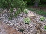 Landscape Pictures | Whitemud Landscaping and Garden Center