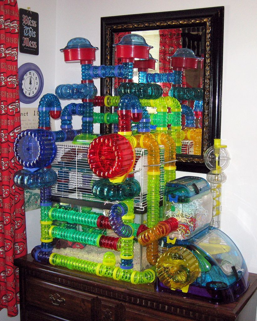 Choosing Hamster Cages And Modular House Habitats Hamster Cages