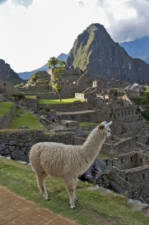Photograph Machu Picchu by Joe Routon on 500px