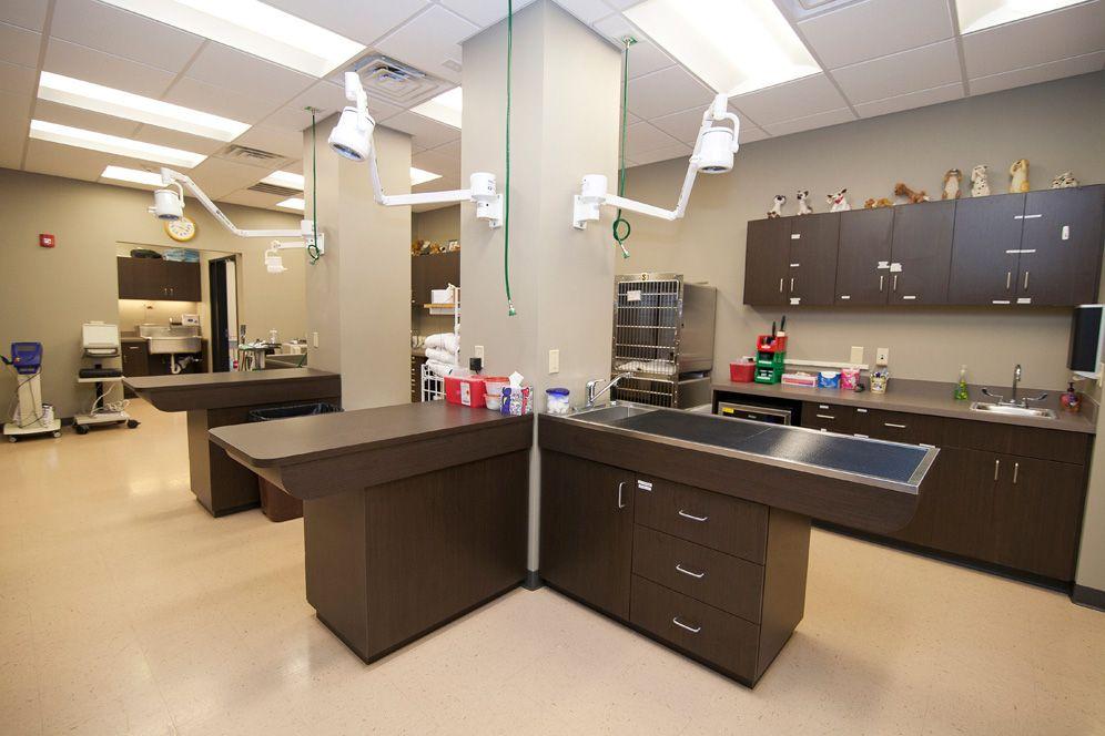 Spotlights Hospital Design With Images Hospital Design
