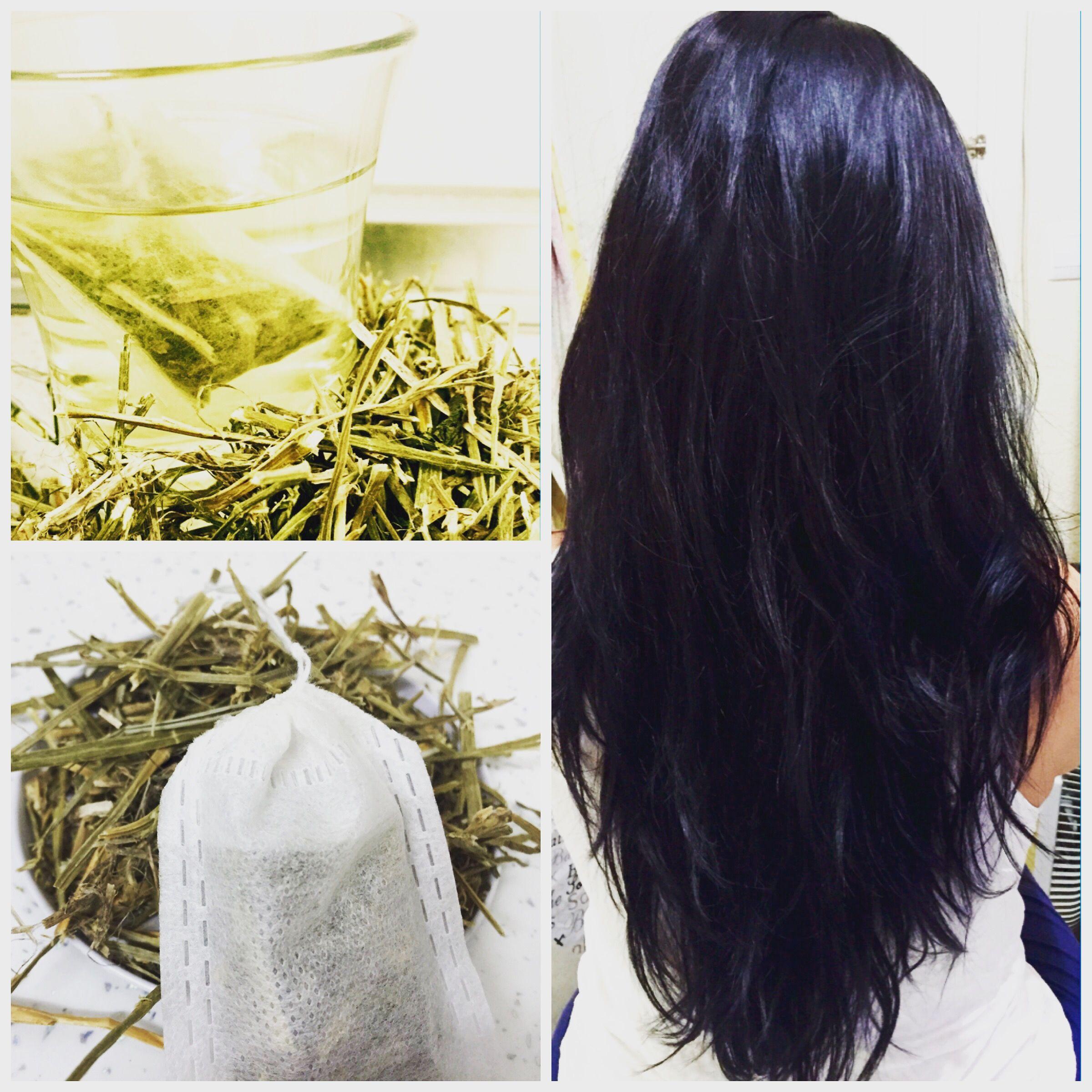 Quieren conocer mi secreto para tener un cabello largo, sano y brilloso todo el año??? Pues pasen y véanlo en mi web!!! Www.tesycafesdelmundo.com                              Gracias por todo, Abrazos de Bienestar KATHY'S TEAS  #té #tea #crecimientocabello #cabellosano #cabellobrillo