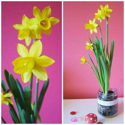 Bulb in jar - could decorate jar